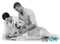 Soutěžte a vyhrajte přípravky z řady Aktivní zvíře
