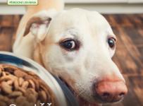 Soutěž o 2kg balení lisovaných granulí cdVet Fit-Crock pro psy