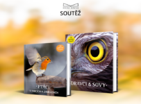 Vyhrajte květnové Knihy měsíce – Ptáci v parcích a zahradách, Dravci a sovy