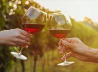 Soutěž o voucher na nákup vín z produkce vinařství Vinselekt Michlovský
